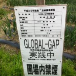Good Agricultural Practices(GAP)で