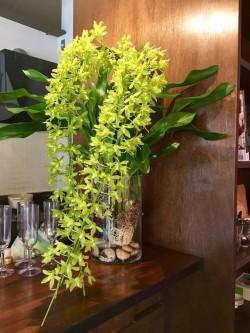 東京教室お花